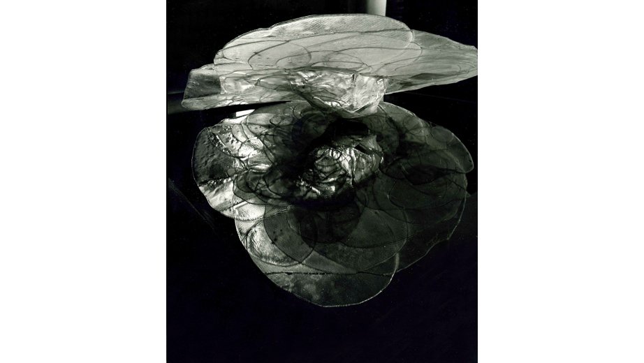 Když zmrzne louže...lehané sklo,1992