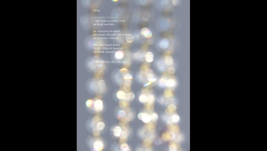 básně 2013