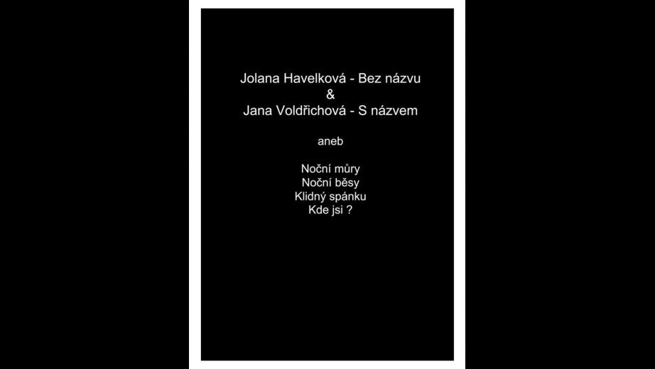 2013 Vyšito pro koncept.výstavu fotografky J.Havelkové